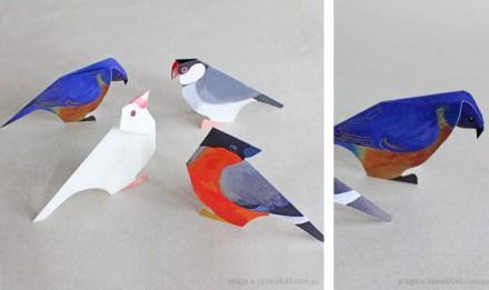 BirdyPick_09April2012_1