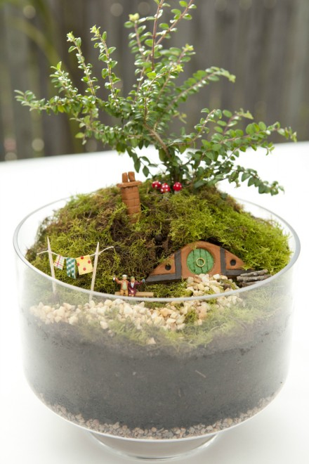Hobbiton Miniature Garden via we-are-scout.com