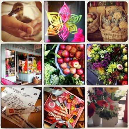 Instagram pics via we-are-scout.com
