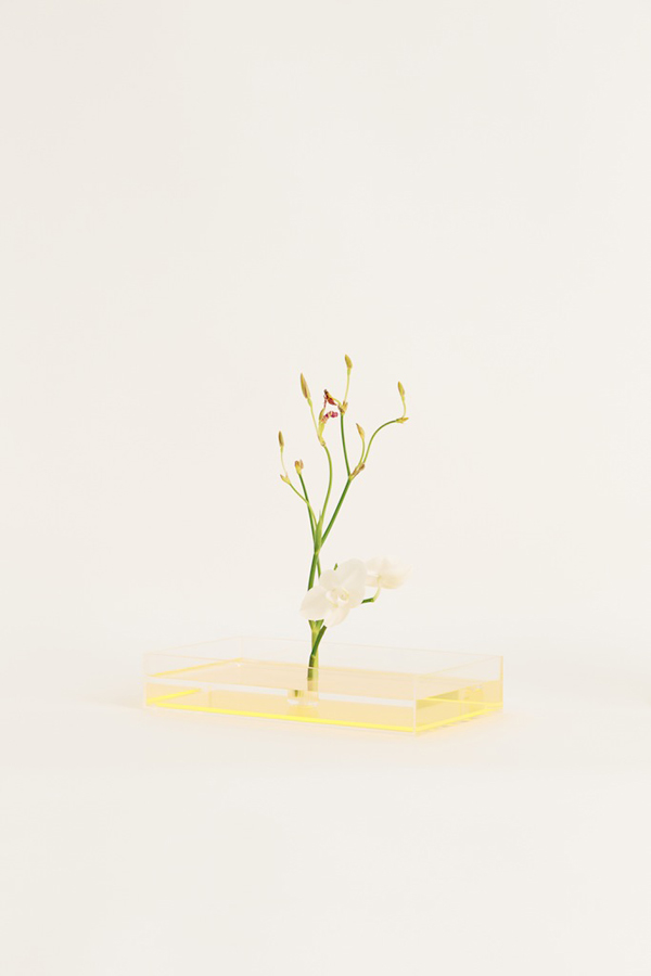Plantica Ikebana-Kit via the red thread