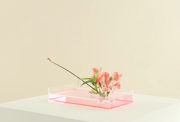 Plantica Ikebana-Kits via the red thread