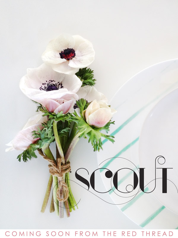 SCOUT :: A new magazine from the red thread