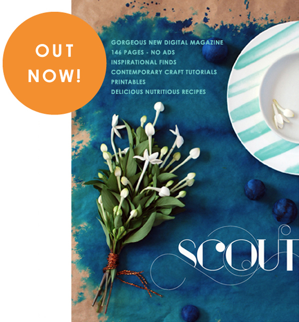 It's here… my digital magazine: SCOUT, has launched!