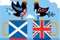 Birdy Pick of the Week: Scotland Decides