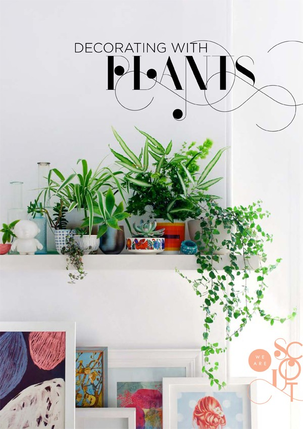 WeAreScout_DECORATINGwithPLANTS_cover