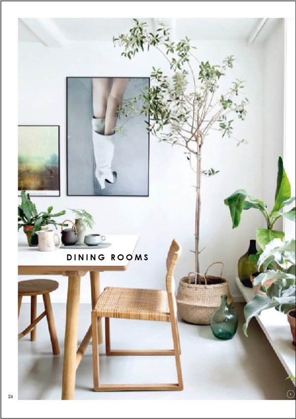 WeAreScout_DECORATINGwithPLANTS_dining