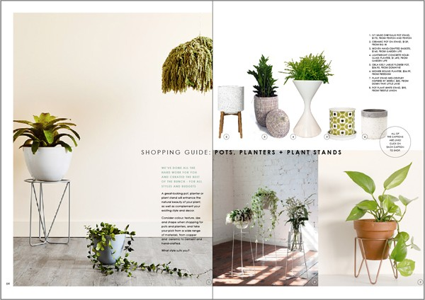 WeAreScout_DECORATINGwithPLANTS_guide