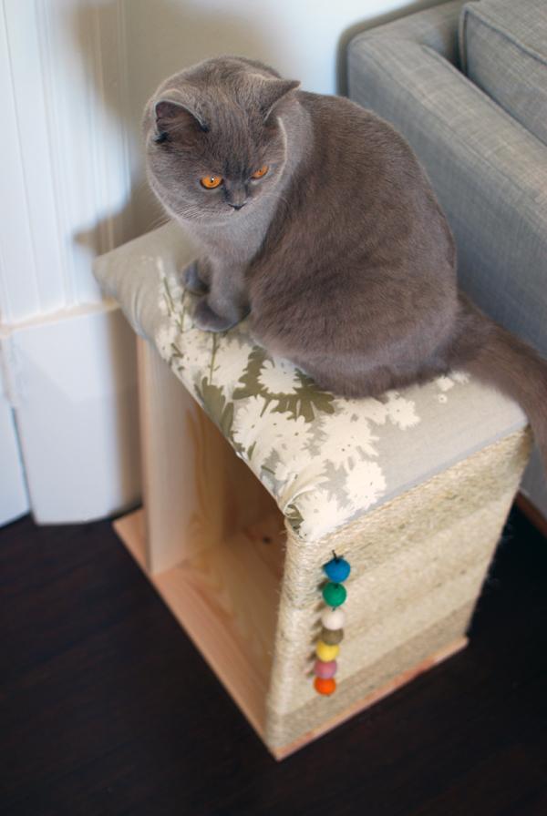 Diy Cat Scratcher Furniture Ikea Via We Are Scout