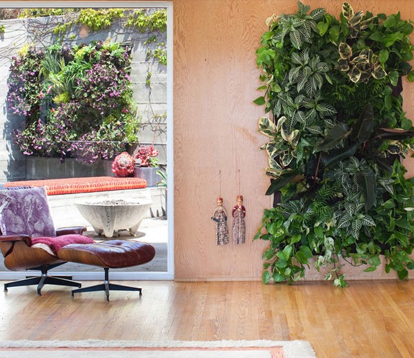 SCOUTED: living wall planters from Woollypocket