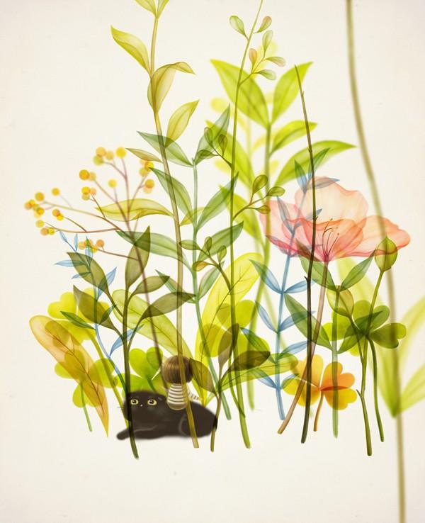 Y. nana Illustration