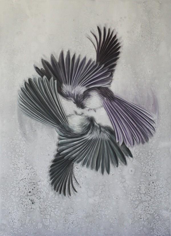 Alex Louisa - Fantail Spin