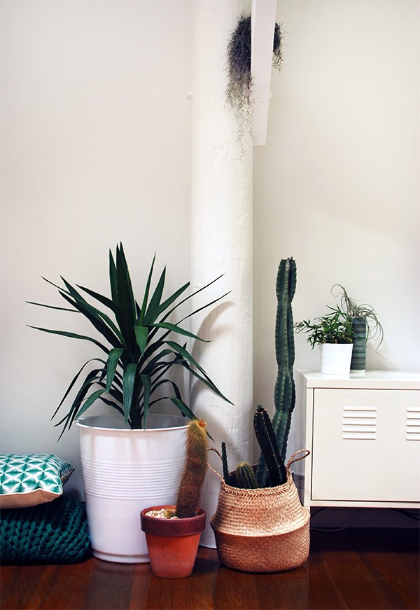 Mod planter! 5 clever ways with Target Australia's $12 giant plastic cup stool.