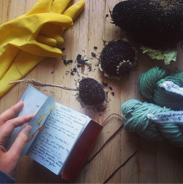 Natural dye- Studio tour and interview with Vanessa aka pidge pidge.
