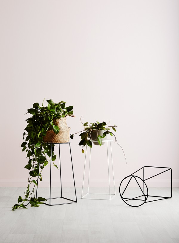 Ivy Muse - new collection of planters and plant stands: 'Homebody' collection