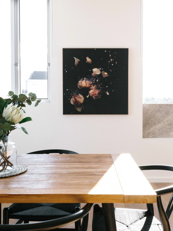 Australian artist Anna Thomas: Fractured Flora series