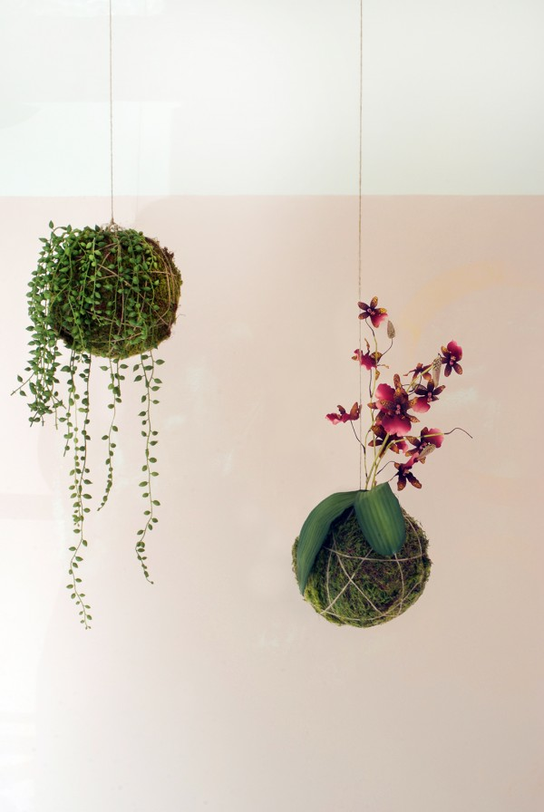 DIY hanging string garden