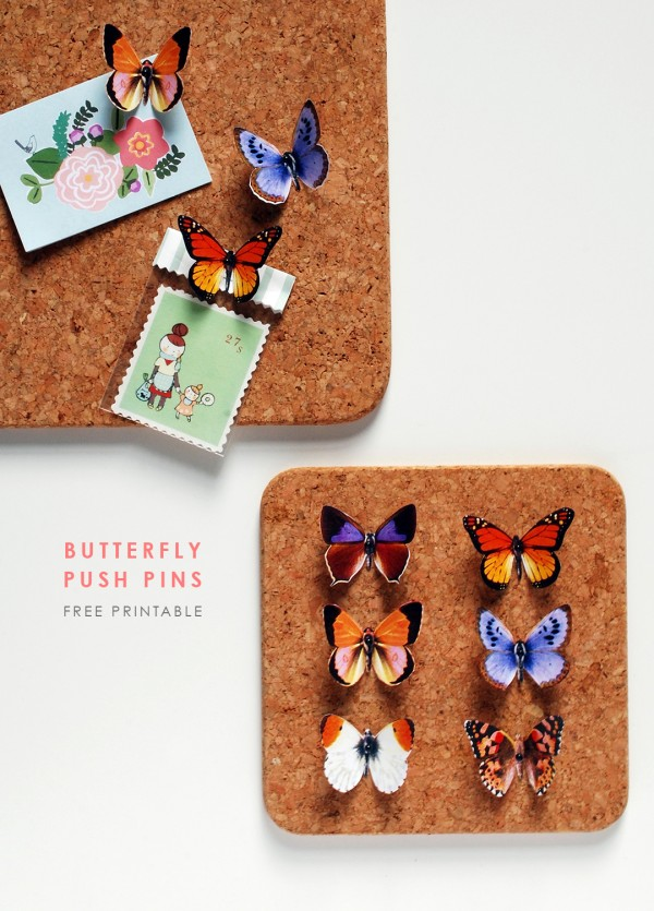 Make these DIY butterfly push pins with the free printable