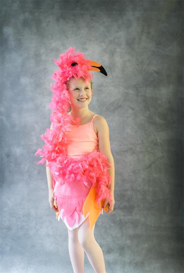 DIY Halloween costumes round up. Flamingo