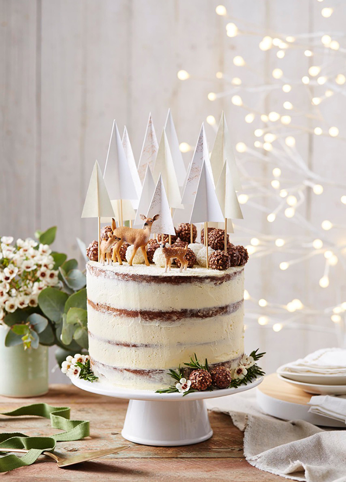 Fun and lovely christmas cake idea. Photo: Benito Martin.