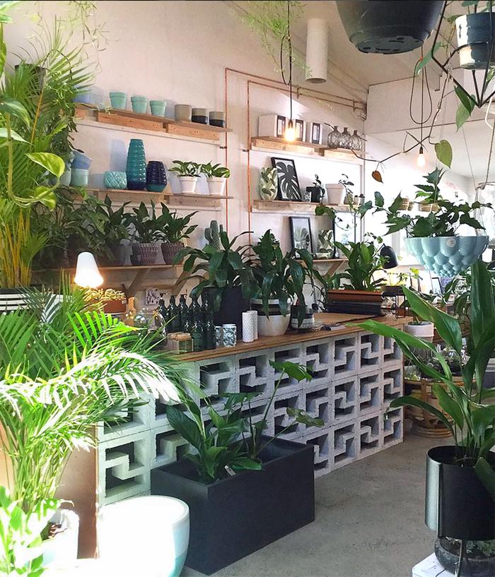 est plant shops - Leaf Love