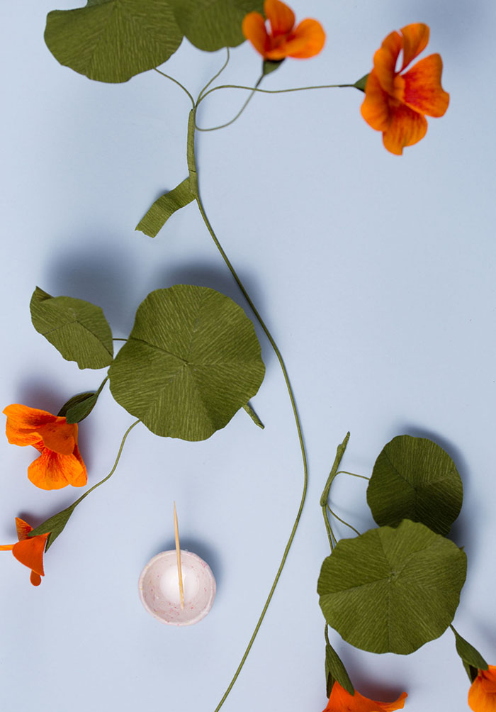 How to make paper flowers with Jennifer Tran of papetal