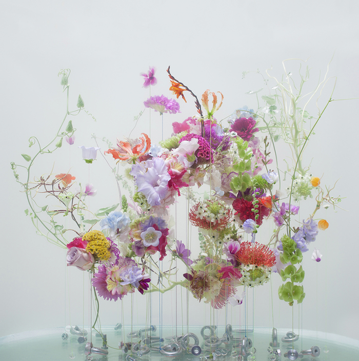 Anne Ten Donkelaar - flowers underwater