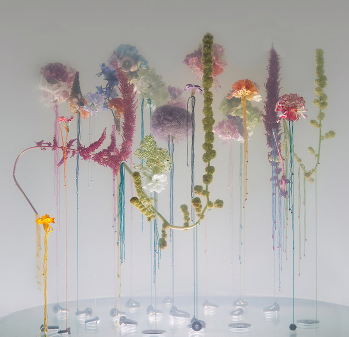 Anne Ten Donkelaar - flowers suspended in water