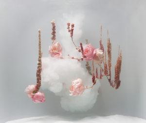 Anne Ten Donkelaar - breathtaking photography