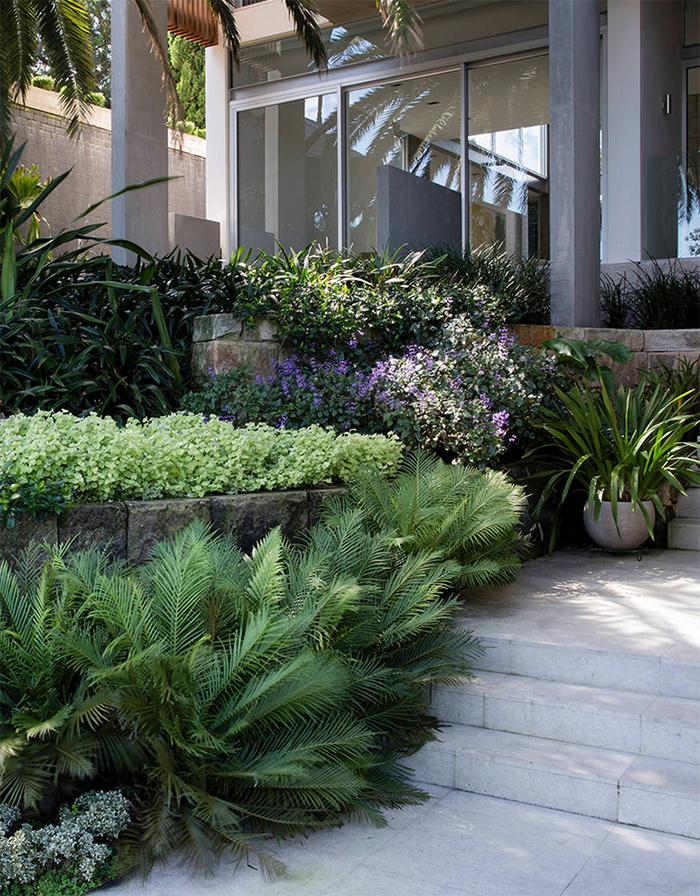 Reknowned garden designer Peter Fudge descibes this front garden as 'organised chaos'