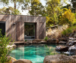 Trend scout: natural pools