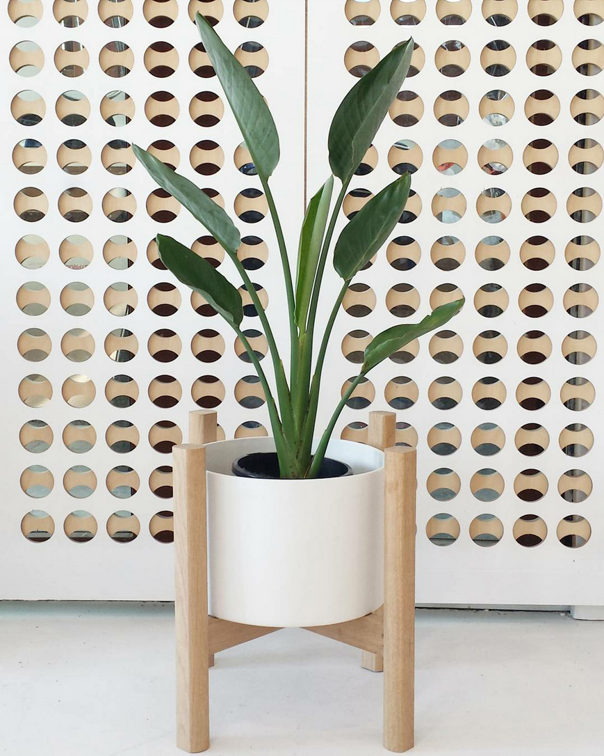 Shopping Guide The 10 Best Planters To Buy Online We
